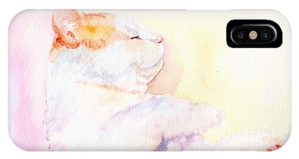 Playful Cat Iv IPhone Case