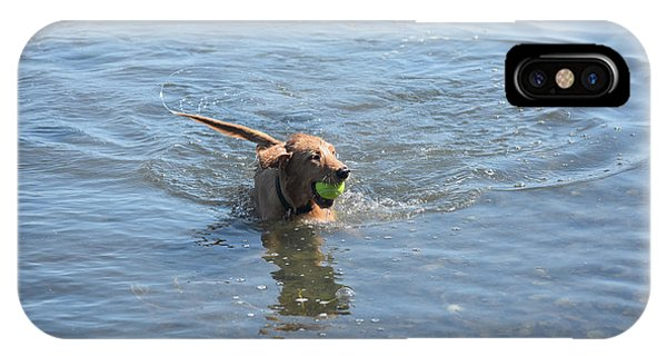Playful Little River Duck Dog In The Water IPhone Case