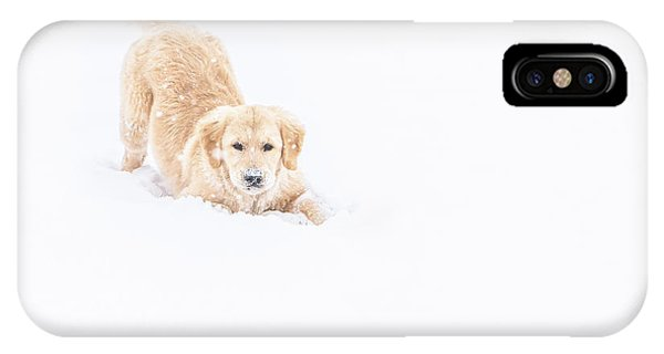 Playful Puppy In So Much Snow IPhone Case