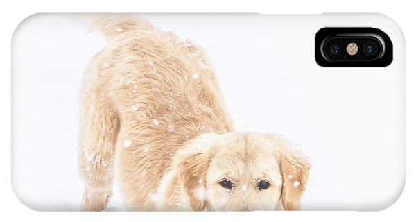 Playful Puppy IPhone Case