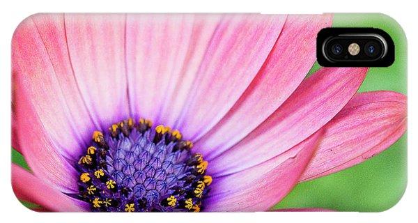 Pleasing Petals IPhone Case