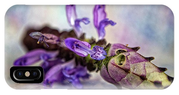 Plectranthus On Show IPhone Case