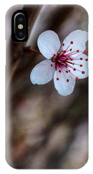 Plum Flower IPhone Case