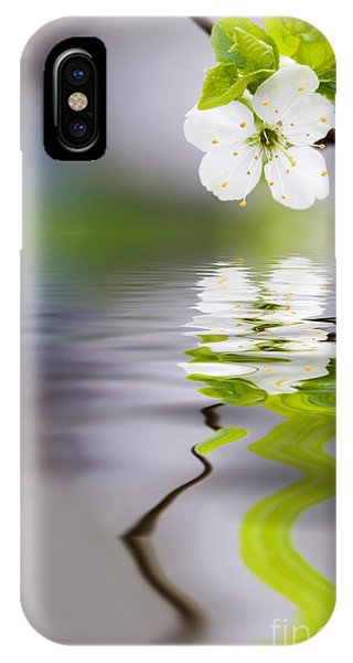 Plum Tree Blooming IPhone Case