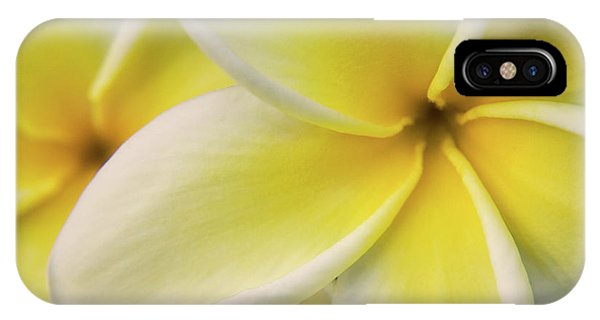 Plumeria Flowers Phone Case by Julia Hiebaum