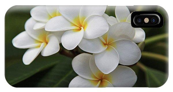 Hawaii iPhone Case - Plumeria - Golden Hearts by Kerri Ligatich