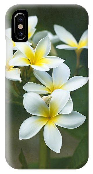 Plumerias On A Cloudy Day IPhone Case