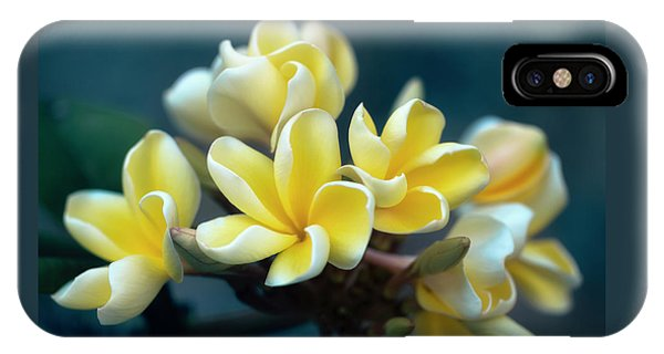 Plumerias Out Of The Blue IPhone Case