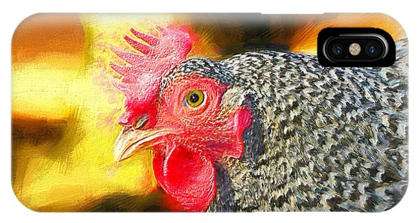 Plymouth Barred Rock Portrait IPhone Case