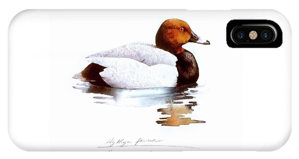 Pochard IPhone Case