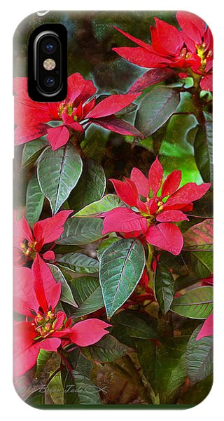 Poinsettia Christmas IPhone Case