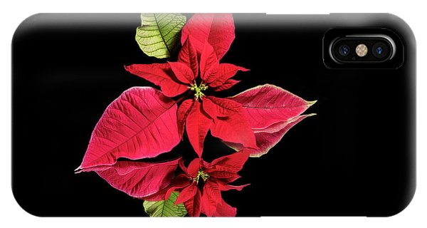 Poinsettia Reflection  IPhone Case