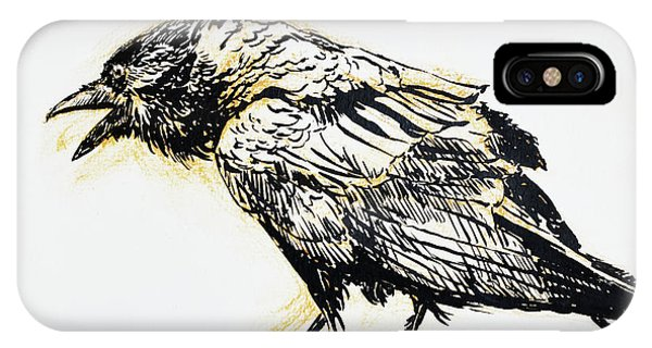 Raven iPhone Case - Point Reyes Raven by Tracie Thompson