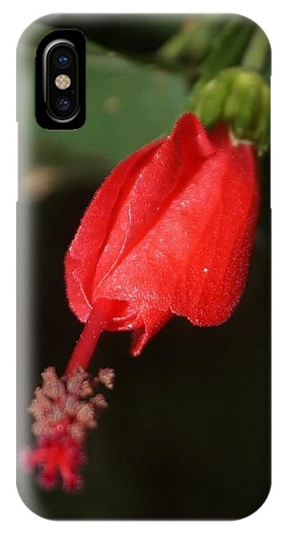 IPhone Case featuring the photograph Pointing Down by Cindy Charles Ouellette