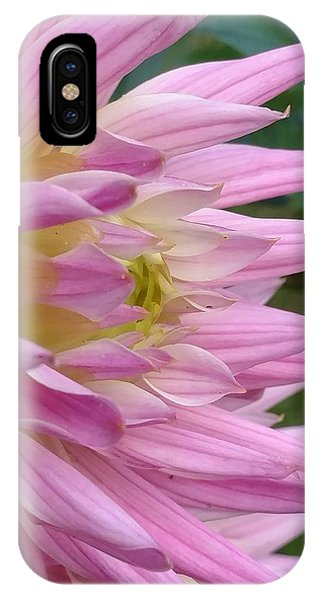 Poised Dahlia Phone Case by Frederick Messner