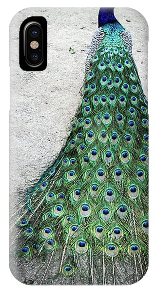Poised Peacock IPhone Case