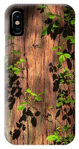 Poison-oak On Incense Cedar IPhone Case