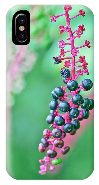 Poke Berries IPhone Case