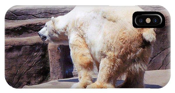 Polar Bear Phone Case by Crystal Webb