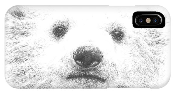Polar Bear Cub IPhone Case