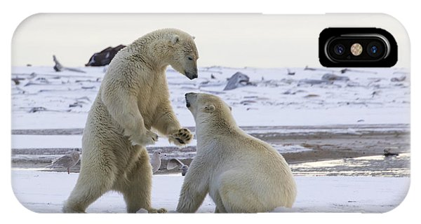 Polar Bear Play-fighting IPhone Case