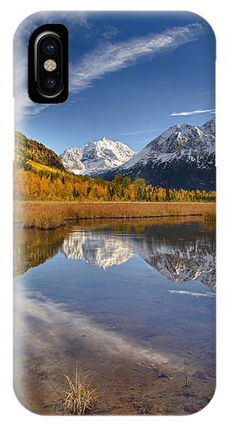 Polar Bear Reflect IPhone Case
