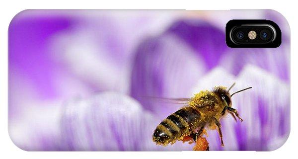 Honeybee iPhone X Case - Pollen Collector by Sharon Talson