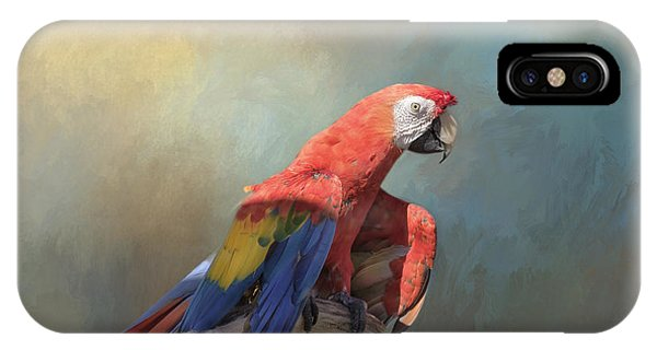 Macaw iPhone Case - Polly Want A Cracker by Kim Hojnacki