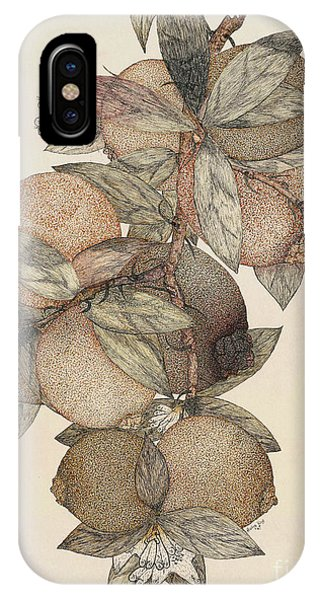 Organic iPhone Case - Pomegranate Fruit, 1867 by Rufus King