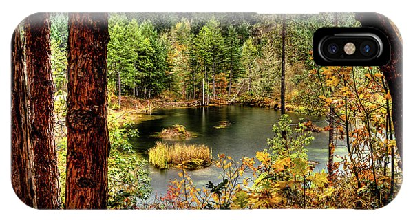 Pond At Golden Or. IPhone Case