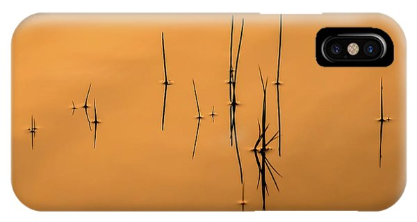 Pond Reeds In Reflected Sunrise IPhone Case