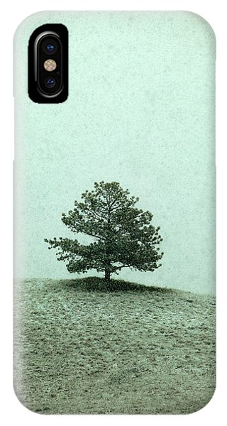 Tint iPhone Case - Ponderosa Pine by Todd Klassy