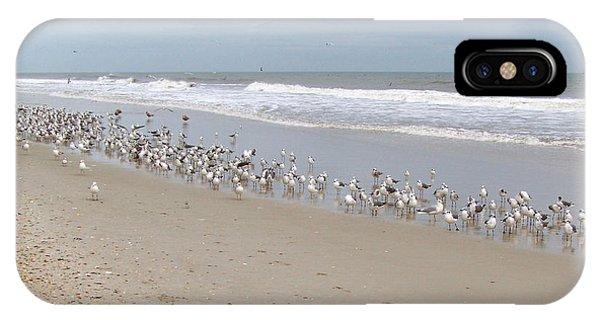 Ponte Vedra Birds IPhone Case
