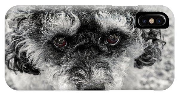 Poodle Eyes IPhone Case
