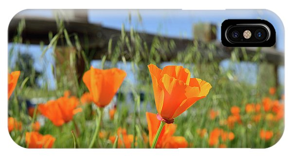 iPhone Case - Poppies On The Fence In Spring by Kathy Yates