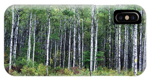 Popple Trees IPhone Case