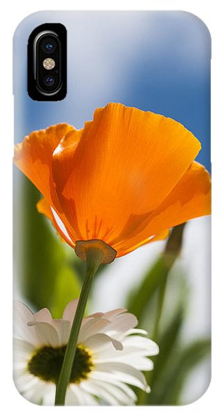 Poppy And Daisies IPhone Case