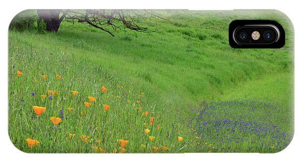 iPhone Case - Poppy And Lupine Meadow by Kathy Yates
