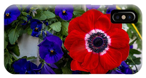 Poppy And Pansies IPhone Case