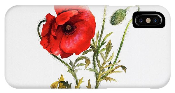 Poppy IPhone Case