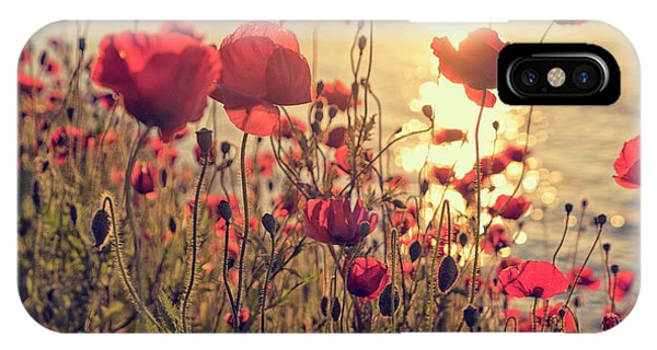 Poppy Flowers At Sunset IPhone Case
