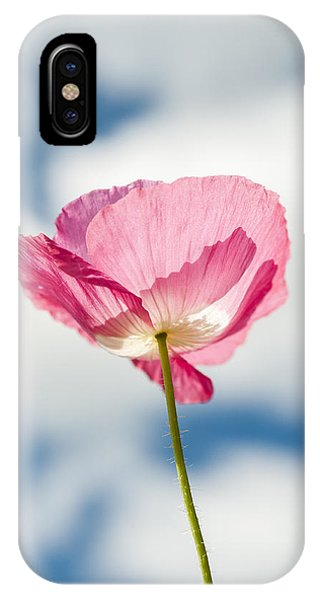Poppy In The Clouds IPhone Case