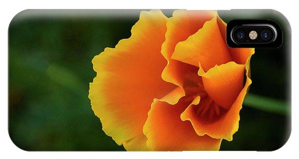 Poppy Orange IPhone Case