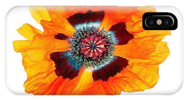Poppy Pleasing IPhone Case