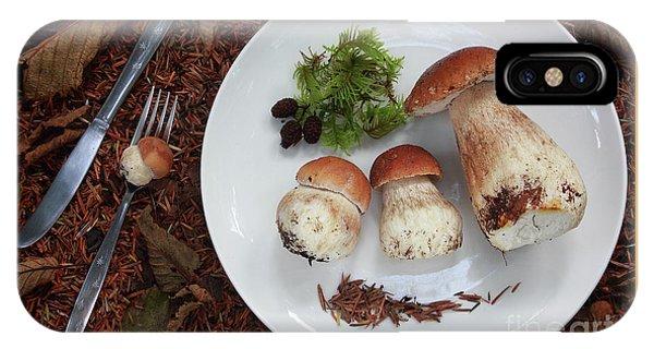 Porcini Mushrooms IPhone Case