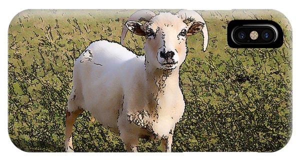Dorset iPhone Case - Portland Sheep Rare Breed From Isle Of Portland Dorset England Uk Illustration by Michael Charles