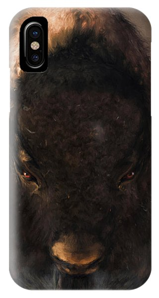 Portrait Of A Buffalo IPhone Case