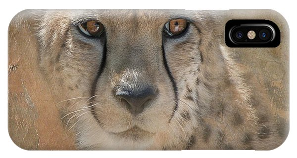 Portrait Of A Cheetah IPhone Case