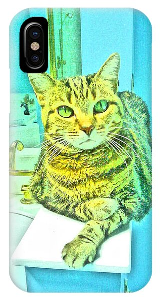 Portrait Of A Feline IPhone Case