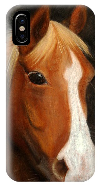 Portrait Of A Horse IPhone Case